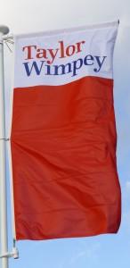 TW flag2